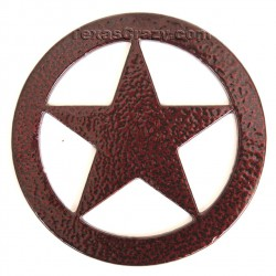 Texas lone star metal paperweight